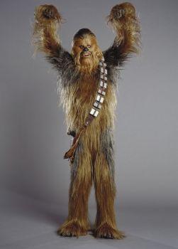 Chewbacca - épilation
