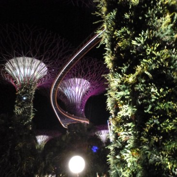 Supertree structures - Marina Bay 2