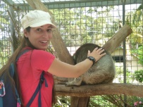 Ferme d'Alpagas de Denmark - Koalas
