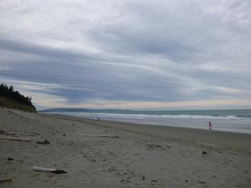 11. Waikuku beach - Notre 1ere palge en NZ