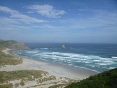 61. Péninsule Otago - Sandfly Bay2
