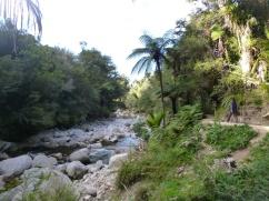 63. Ballade dans l'Abel Tasman Park
