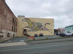 64. Street art Dunedin