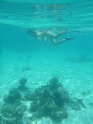 58. Moment snorkeling