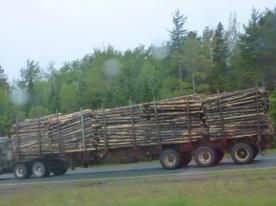 31. Des trucks plein de bois que l'on croise sur la route, comme on s'imaginait le pays