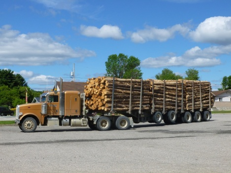 20. Wood truck