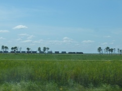 27. Route prairies