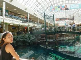 31. Edmonton - Plus grand mall au monde...