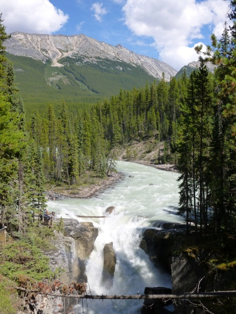 51. Rocheuses - Athabasca falls