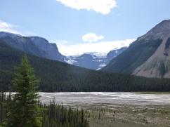 57. Rocheuses - Route des Glaciers