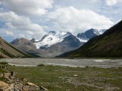 58. Rocheuses - Route des Glaciers