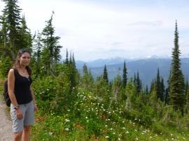 89. park Mt Revelstoke et ses fleurs sauvages