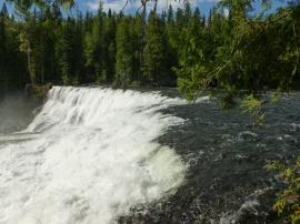 42. Dawson falls