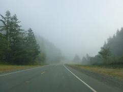 116-le-smog-guette
