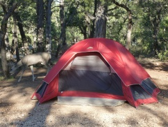 47-le-camping-et-ses-occupants