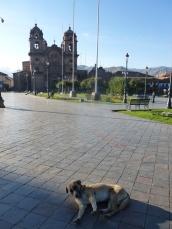 3. Il est 6h Cuzco s'éveille...