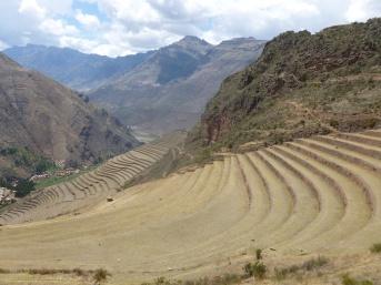 42. Les impressionnantes cultures en terrasse incas