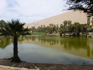 11. Huacachina2
