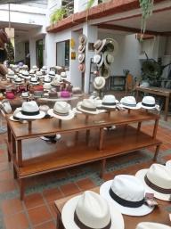 12. Le panama, couvre-chef originaire d'Equateur