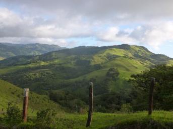 30. Environs de Monteverde2