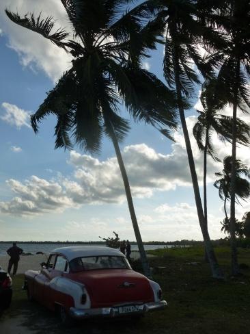 Cuba - Playa Larga