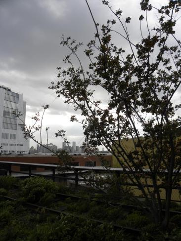 133. La coulée verte, une chouette balade sur une ancienne voie ferrée aérienne