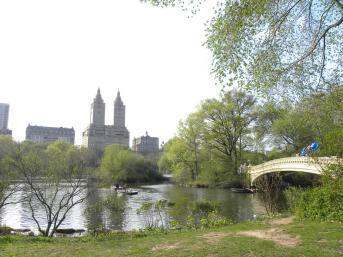 25. Central Park4